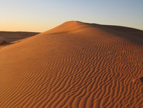 Escorted Tours to Birdsville from Longreach - Photo