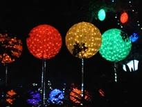 Guided Christmas Holidays 2021 - Photo