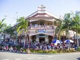 Small thumb 163268 4 grafton jacaranda festival   photo  destination nsw