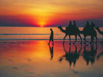 Kimberley Tours, Escorted coach tours to Broome and the Kimberley, Broome Tours - Photo