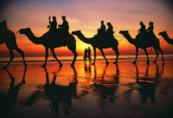 Sunset Camel Ride on Cable Beach Broome, Western Australia